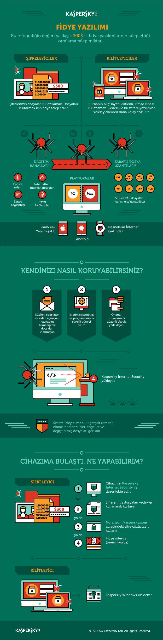 Fidye yazılımı Infographic